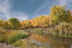 Island in the stream (Rocky Pix) Tags: county water creek river rockies golden colorado longmont boulder cottonwood handheld nikkor michel pastoral ponds f28 stvrain f28g normalzoom islandinthestream basinrockypixrockymountainpixw kiteleyf16180thsec24mm2470mm
