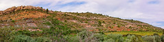 Albas Sandstone Panorama - High-Res (Peter Gorges) Tags: rock highresolution sandstone background vine foliage corbieres albas d300 southfrance niksoftware imagenomicnoisewareprofessional
