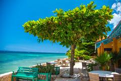 _JAM7423 (Jamil D750) Tags: jamaica smoked marlin sunny ocean beach oceanview view restaurant tropical blue sky waves nikon nikond750 green yellow orange stone