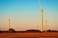 Wind Turbines (azhukau) Tags: outdoor landscape countryside summer sunset wind energy power windturbines farm farming sustainableenergy ontario canada 2016 smc takumar 135mmf35 field
