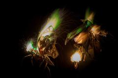 attrata-4 (Michael Prados) Tags: leattrata therm burningman burningman2016 bm2016 fireart sculpture