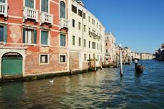 Grand Canal, Venice DSC_8016 (Nina Roberts) Tags: grandcanal venice italy sun light gull gondola gondolier