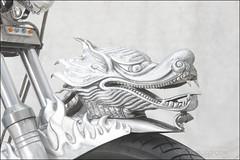 bikes-2009euro-002-e-l