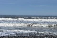 Ocean Waves at Ruby Beach (Tynan Phillips) Tags: nature nikon nikond90 d90 dslr rubybeach washington washingtonstate washingtoncoast ocean wave waves coast sea beach landscape oceanscape usa america