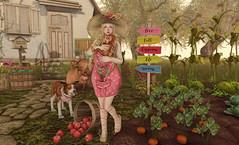 Simple Kind of Life (Gabriella Marshdevil ~ BUSY IRL) Tags: sl secondlife cute kawaii whimsical jian vco blackbantam