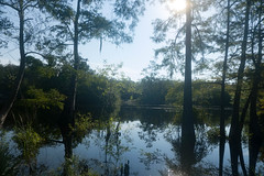 Saint Mary's River at Traders Hill-002 (RandomConnections) Tags: ferrylanding folkston georgia kayaking paddling unitedstates hilliard florida us