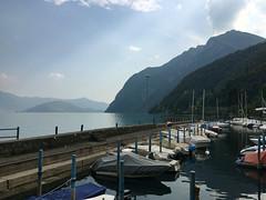 (Paolo Cozzarizza) Tags: italia lombardia bergamo rivadisolto acqua lago lungolago panorama cielo riflesso imbarcazione porto animale cigno