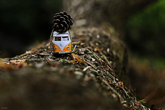 Autumn's coming..... (eleni m) Tags: autumn herfst toycar vw bus classical pinecone dennenappel outdoor dof rope touwtje