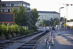 Im nordwestlichen Teil der Truderinger Strae zwischen Vogelweideplatz und Riedenburger Strae werden derzeit ebenfalls die letzten Schienenstcke auf Hhe mehrerer bergnge verlegt (Frederik Buchleitner) Tags: baustelle bergamlaim haidhausen linie25 mvg munich mnchen neubaustrecke steinhausen strasenbahn streetcar tram trambahn