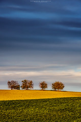 Campagna Maceratese (emanuelezallocco) Tags: hills nature landscape trees colors sky blue clouds beauty