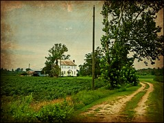 The 1840 Spencer Harris House: Bruce Vicinity, Pitt County, North Carolina (EdgecombePlanter) Tags: rural nc path decay farm farming farmland historic oldhouse vacant pathway deteriorating powerpoles dirtpath utilitypoles rurallandscape beautyindecay soybeansgreekrevival