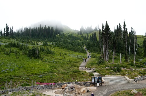 Mt. Rainier Summer 2012 10