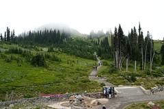 Mt. Rainier Summer 2012 10
