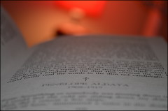 It was written (Gareth Priest) Tags: uk light red inspiration wales night relax reading book words bedroom nikon focus experimental dof zoom creative cardiff redlight carlosruizzafon favoritebook theshadowofthewind d5100