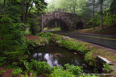 Carriage Road (Dan Sherman) Tags: road bridge green rain fog unitedstates maine northeast acadia mountdesert acadianationalpark stonebridge