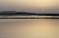 (M!ss) Tags: sunset summer vacation italy holidays italia tramonto mare estate sale sicily saline sicilia vacanze trapani
