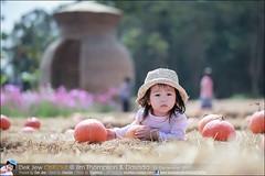 1Day-trip-Jim-Thompson-Farm&Dasada-Gallery_E12663461-009