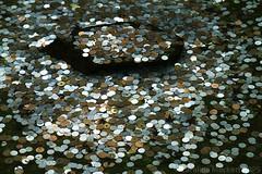 Make A Wish (cazphoto.co.uk) Tags: water japan garden pond kyoto coins zen lucky wish ginkakuji 銀閣寺 京都市 canoneos7d canon24105mmeff4lisusm