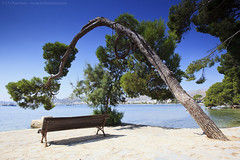 Lonely Bench #57 (louistib) Tags: bench pin lonely plage banc solitaire majorque mditerane louistib wwwltchamboncom img05601c