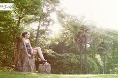 . (Paco Jareo Zafra) Tags: verde arbol madera silla bosque cantabria palacio rayos pensando comillas reflexionando