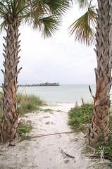 Anna Maria Island (IRick Photography) Tags: anna maria island city pier fl florida paradise palm tree trees beach beaches sand sands sandy white tropical ocean water waterfront