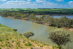 Young Husband, Murray River, South Australia (Sharon Wills) Tags: southaustralia australian landscapes murrayriver murraylands tourism murray river water nature south australia younghusband young husband