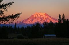 August Sunset on Mt. Rainier (louelke - gone a lot) Tags: mtrainier sunset sunsetcolors alpenglow mountain volcano cascademountains washingtonstate wow