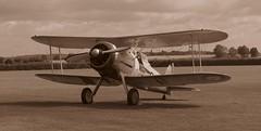 K7985 Gloster Gladiator, 73 Sqdn, Royal Air Force.     (IMG_9464) (Robert G Henderson (Romari).) Tags: gloster gladiator aircraft biplane shuttleworth oldwarden august 2016