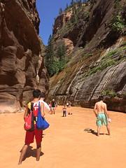 Hiking the narrows (KFiabane) Tags: zion utah virginriver thenarrows