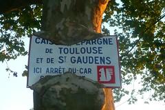 L'cureuil est  sa place : dans l'arbre (mistigree) Tags: saintlon panneau arbre cureuil