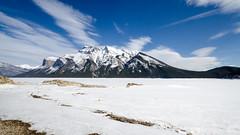 Lake Minnewanka (the_green_squirrel) Tags: banff canada fauna lakeminnewanka alberta improvementdistrictno9 ca