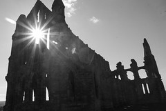 _DSC1014 (Ryd3rsPhotographs) Tags: whitby abbey photo building noob beginner amature horse grave yard goth gothic scenery grass scenic landscape long exposure