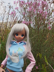 Traveling with... Chitose (sh0pi) Tags: smart doll chitose kasshoku danny choo culture japan cyristinecreations