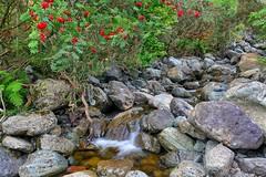 ~Slow flow~ (Lee~Harris) Tags: water streem rocks rock rugged colours flowing flowingwater longexposure