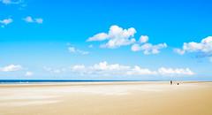 Walking the dog (colinb4) Tags: beach figure light minimal