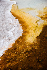 thermophiles (almostsummersky) Tags: geothermalpool spring hotspring water yellowstone thermophile microbialmat summer bacteria travel nationalpark reflection biscuitbasin microbe sapphirepool yellowstonenationalpark geothermal terrace wyoming unitedstates us