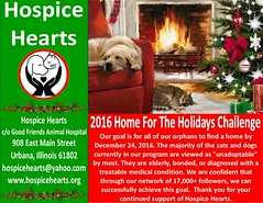 2016 Home For The Holidays Challenge (Hospice Hearts) Tags: hospicehearts urbana champaign illinois il wwwhospiceheartsorg cat cats foster feline felines foreverhome animalrescue rescue dogs dog volunteer help donate give seeouradoptablepetsonpetfinderherehttpswwwpetfindercompetsearchshelteridil837 seeouradoptablecatsonfacebookherehttpswwwfacebookcom559931174016956photostabalbumalbumid1095397550470313 seeouradoptabledogsonfacebookherehttpswwwfacebookcom559931174016956photostabalbumalbumid1095405880469480 filloutanadoptionapplicationherehttpssecurelglformscomformengines2y6rjn0xab2alyzj6amxq 2016homefortheholidayschallenge homefortheholidays