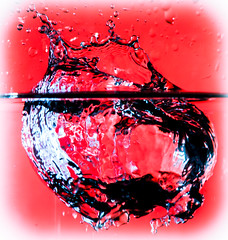 Water art (Photography By Robert Young) Tags: red nikon waterdrop waterdrops tamron waterart d60