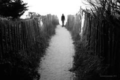 The path (Jerome Pouysegu) Tags: ocean white man black beach silhouette noir path 5d plage blanc chemin homme blackwhitephotos