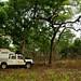 Estradas remotas, acampamentos remotos