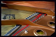 Piano uttar (Ibrahim Alsaigh) Tags: music nikon piano uttar nikon3100 نيكون بيانو اوتار nikond3100