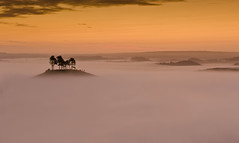 Colmers Hill (Mark A Jones (Andreas Jones Photography)) Tags: england mist fog sunrise landscape dawn nikon dorset bridport quarryhill jurassiccoast 2470f28 leefilters colmershill d700