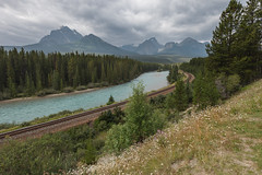 Morant's Curve (seryani) Tags: trip viaje trees summer vacation portrait naturaleza mountain holiday canada mountains tree nature sergio río train canon river landscape rockies outdoors nationalpark scenery holidays view outdoor retrato railway august paisaje agosto bosque alberta verano vista banff rockymountains nublado lakelouise montaña vacations vacaciones bowriver canadá montañas 2012 vía banffnationalpark ferrocarril rocosas bosques canadianrockies parquenacional airelibre bowvalley morant canadianrockymountains bowvalleyparkway morantscurve montañasrocosas canoneos5dmarkii canonef1635f28lii canonef1635 5dmarkii canadarockymountains august2012 summer2012 montañasrocosasdecanadá verano2012 agosto2012 vacaciones2012 parquenacionaldebanff curvademorant ríobow sergiolanza