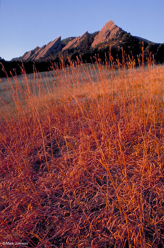 Photo - Bluestem & Flatirons