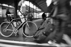 en route (The Cassandra Project) Tags: travel bw blur station bicycle digital train schweiz switzerland reisen nikon cyclist suiza swiss luzern rail bahnhof luggage unterwegs sw passenger masstransit publictransport svizzera schwarzweiss bahn lucerne velo merchandising enroute sponsorship sveitsi reisende fahhrad v onroute ffentlicherverkehr d3s