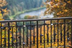 Lock Autumn #273/365 (A. Aleksandraviius) Tags: autumn trees macro ex colors leaves leaf nikon lock sigma apo ii 365 70200 f28 lithuania vilnius dg 2012 parkas 70200mm project365 hsm 365days d700 regioninis 273365 nikond700 3652012 verki