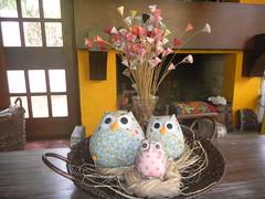 .CoRuJaS. (DoNa BoRbOlEtA. pAtCh) Tags: handmade owl corujas bho donaborboletapatchwork denyfonseca