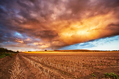 Big Sky Over North Yorkshire (mark_mullen) Tags: uk sunset england sky storm clouds rural landscape farm farming crop land fields crops agriculture malton northyorkshire agricultural stubble canon1740f4 sandylane wintringham canon5dmk3 markmullenphotography