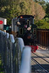 Backing into the shed (Seaside-Mike) Tags: classic train bill oldstyle waterfront pentax shed sigma australia steam adelaide locomotive southaustralia semaphore steamtrain oldfashioned beachside trainride puffing minitrain sema4 sea2side mikestobaphotography semaphoretrain