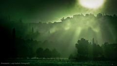 Painting with light green (Photoskatto) Tags: light nature colors composition photography photo dof bokeh depthoffield explore nebbia luce theshire colorgrading arbizzano theauthorsplaza luigiscattolin